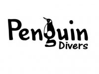 Penguin Divers