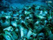 Shark + Jolanda Reef (Ras Mohamed) -Toilet