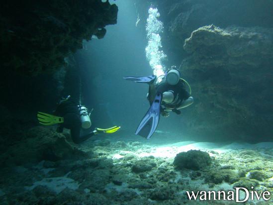 Scuba diver dating services